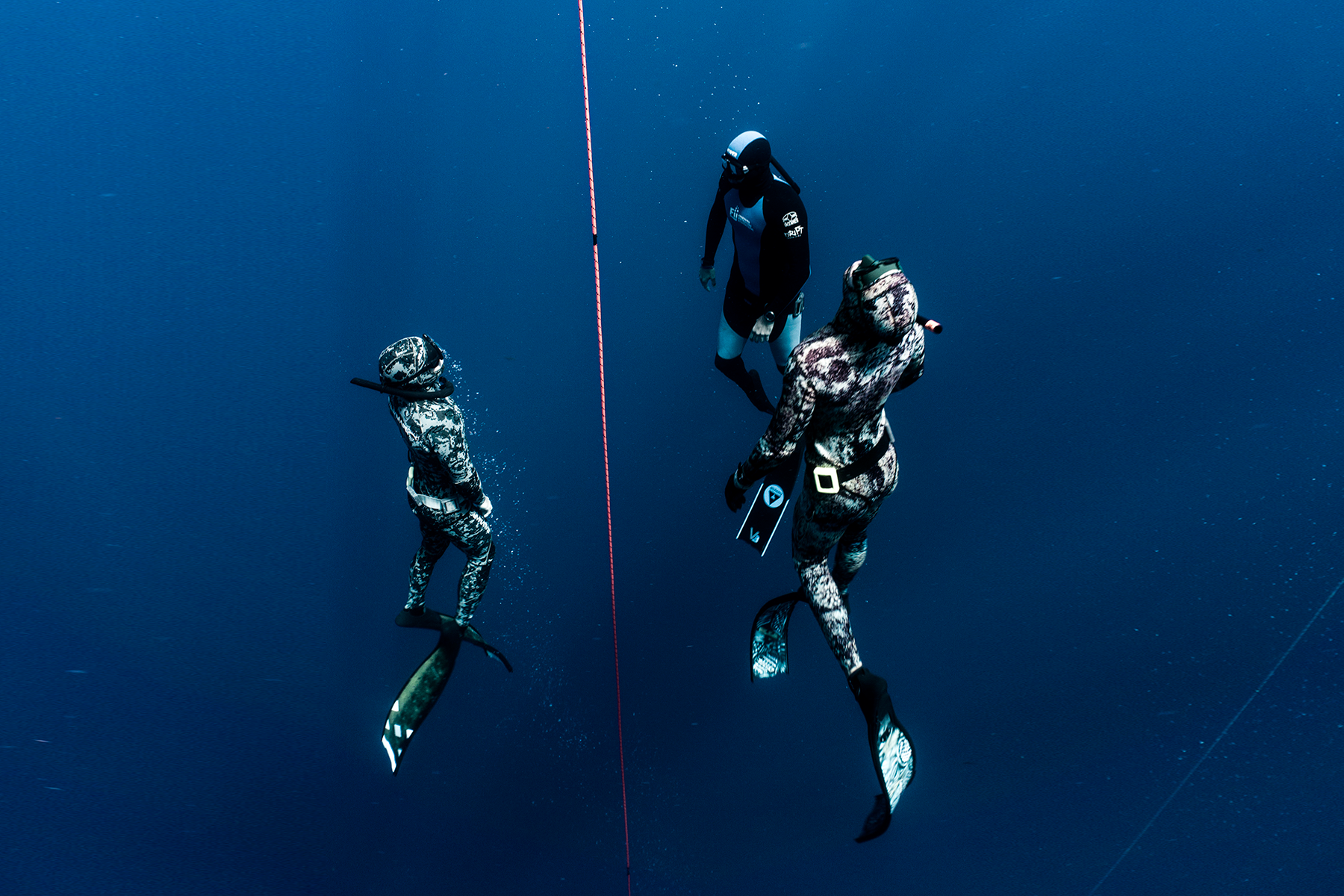 Level 2 freediver